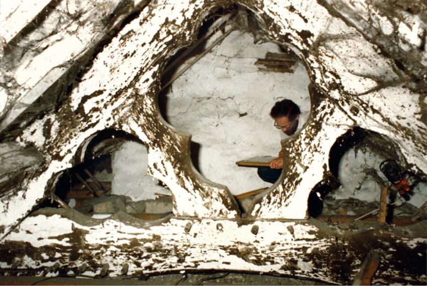 Llun o breniau to Cefn Caer, Pennal. DI2006_0988 NPRN 28277