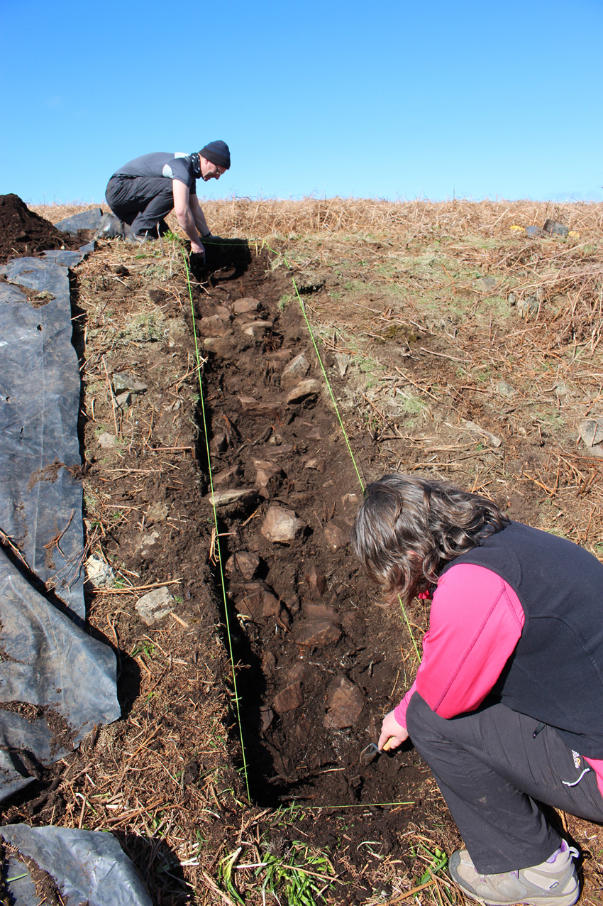 Excavation of a prehistoric field lynchet on Skomer Island in Spring 2016