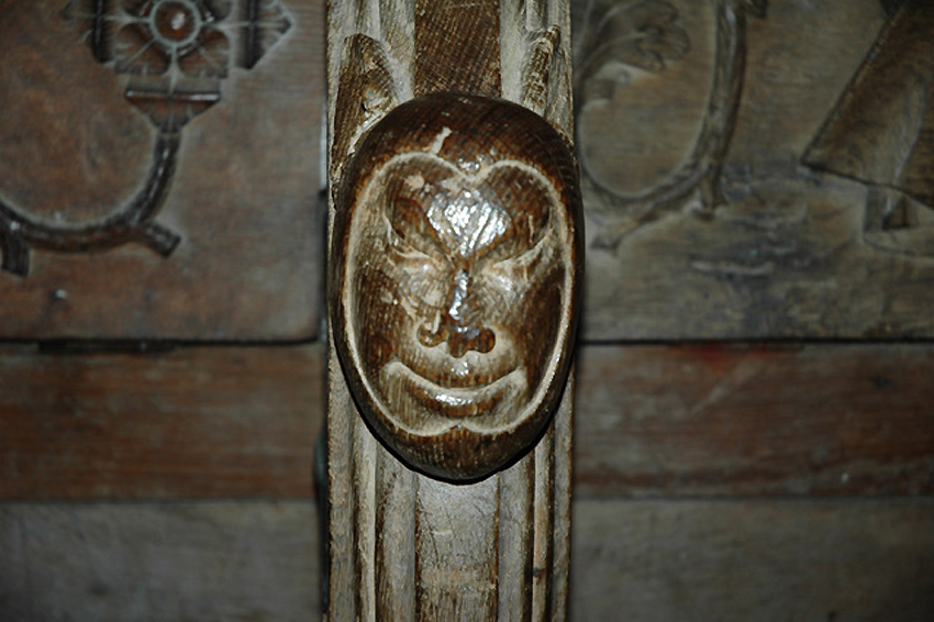Misericord head, St. David's Cathedral NPRN 306 DD2017_011_01 C.624596 Copyright reserved