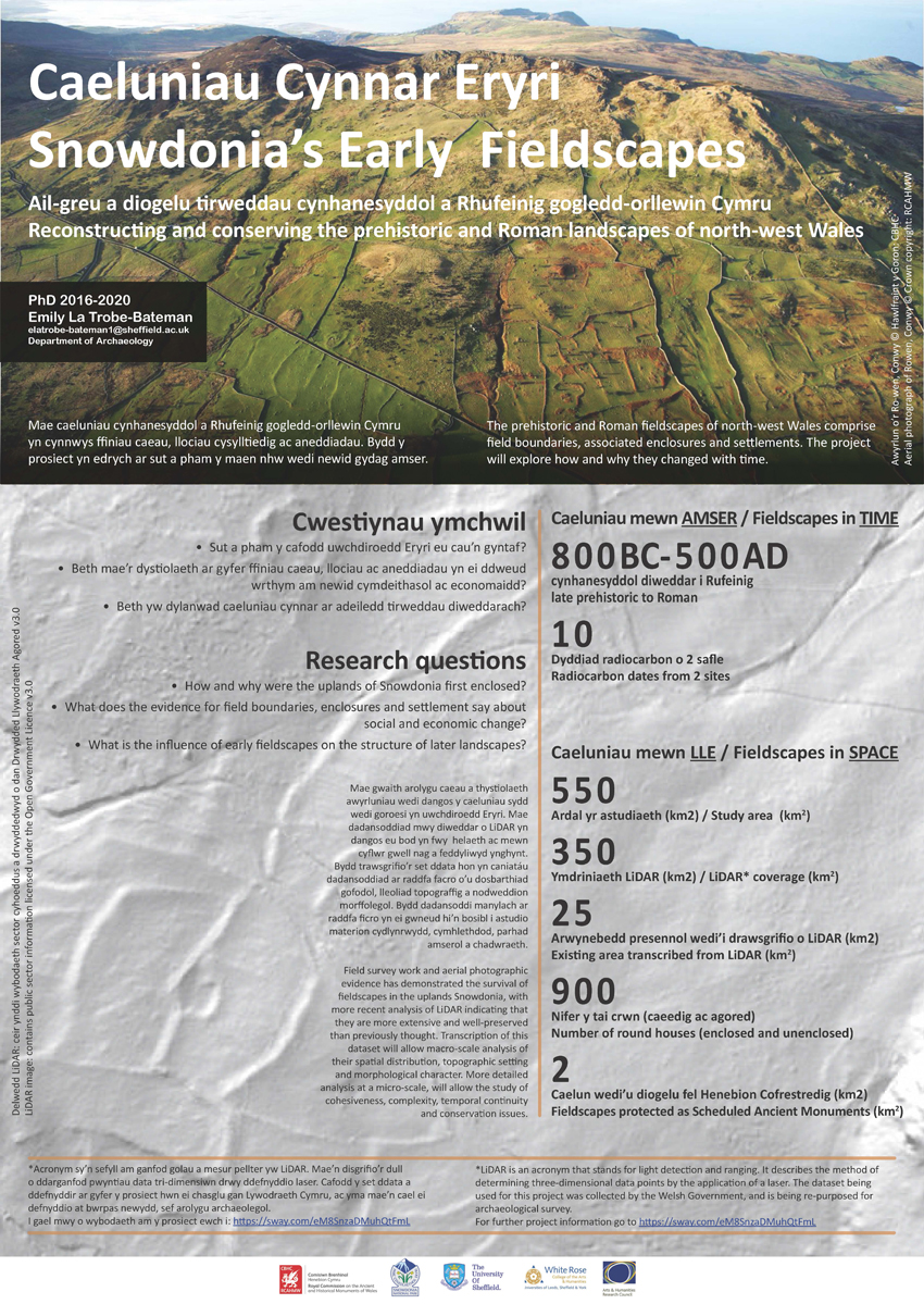 Snowdonia Early Fieldscapes Poster
