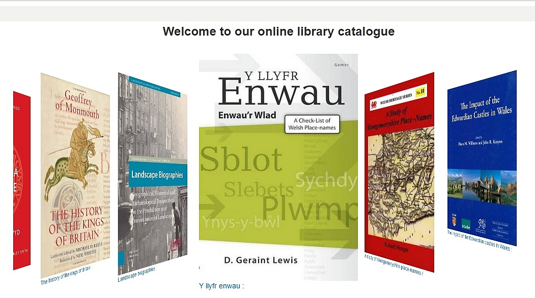 Library catalogue screenshot