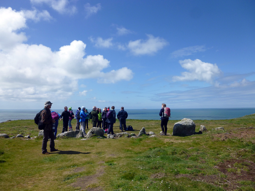 At Skomer Head: is it a prehistoric field boundary or stone row?