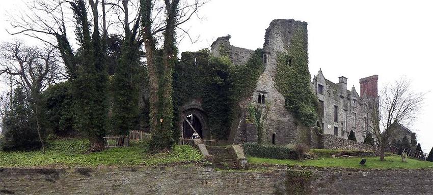 Golygfa ongl-lydan o'r dref yn dangos Castell y Gelli a Thŷ'r Castell.