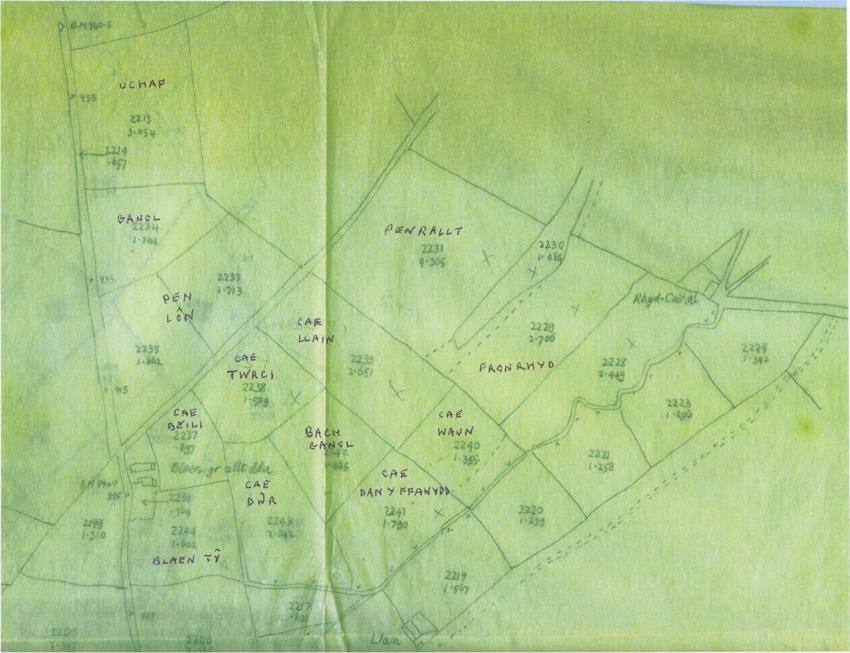 Blaen yr allt ddu field names 1979