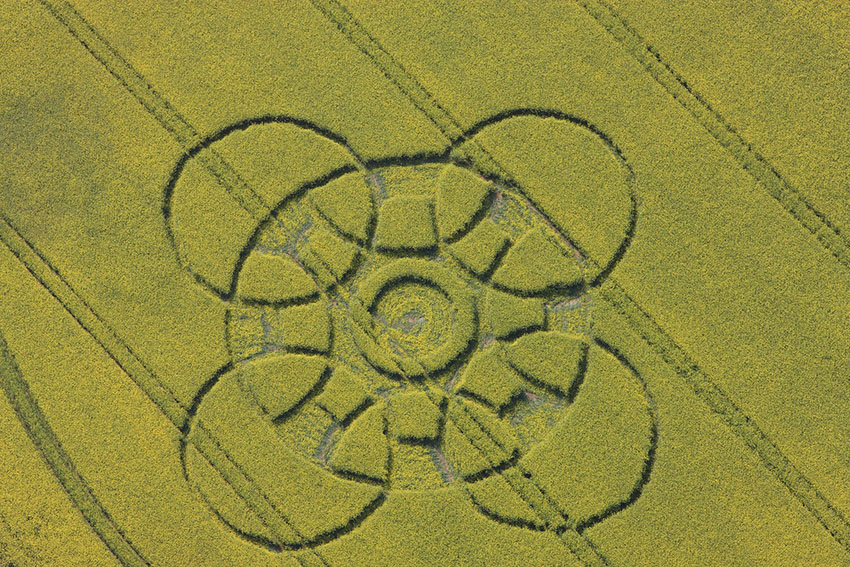 Crop Circle, Chepstow