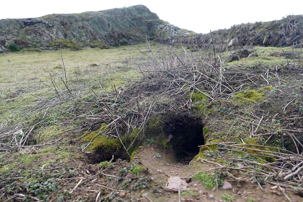 The rabbit hole which produced the new prehistoric finds (Richard Brown and Giselle Eagle, WTSWW).